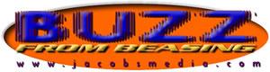 Buzz_300